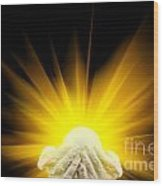 Spiritual Light In Cupped Hands Wood Print