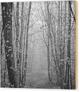Spiritual Passage II Wood Print