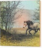 Spiritus Equus Wood Print