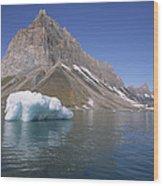 Spitsbergen Islandn Svalbard Norwegian Wood Print