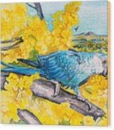 Spix's Macaw - A Dream Of Home Wood Print