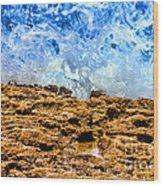 Splash In La Jolla By Diana Sainz Wood Print