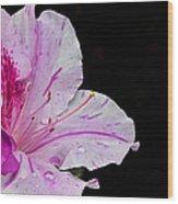 Splash Of Color Wood Print