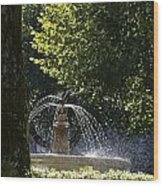 Splashing Water From Fountain Wood Print