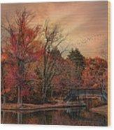 Splendor In The Park Wood Print