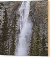 Splendor Of Takakkaw Falls Wood Print