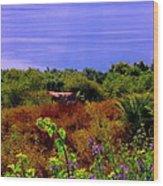 Splendor Of The Mount Of Beatitudes And The Sea Of Galilee Wood Print by Sandra Pena de Ortiz