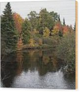 Splendor On A River Wood Print