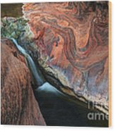 Splendor On Quail Creek Wood Print