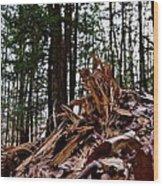 Splintered Hemlock Wood Print