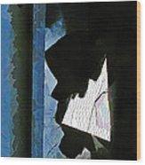 Splintered  Wood Print