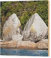 Split Apple Rock Near Abel Tasman Np In New Zealand Wood Print