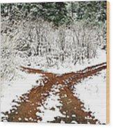 Split Decision Wood Print by Marilyn Hunt