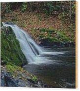 Split Falls Wood Print by Scott Gould