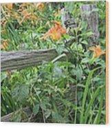 Split Rail Fence Wood Print by Laurinda Bowling