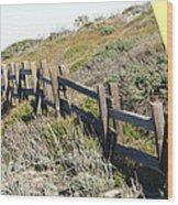 Split Rail Fence Yellow Wood Print by Barbara Snyder