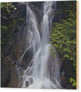 Split Top Falls Wood Print