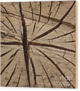 Split Wood Wood Print by Art Block Collections
