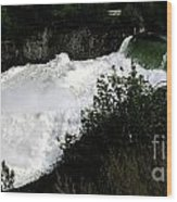 Spokane Falls In The Spring Wood Print