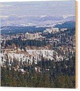 Spokane View 2-4-14 Wood Print