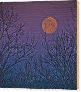 Spooky Beauty Wood Print