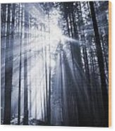 Spooky Forest Wood Print