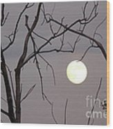 Spooky Moon Wood Print by Deborah Smolinske