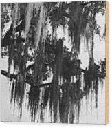 Spooky Trees Wood Print