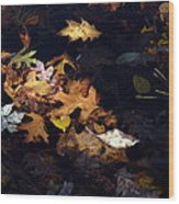 Spot Lighting Wood Print