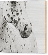 Spots Wood Print