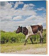 Calf Walking In Natural Landscape  Wood Print