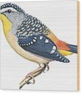 Spotted Diamondbird Wood Print