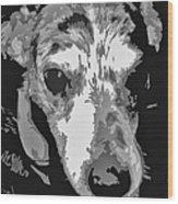 Spotted Dog Black And White Wood Print