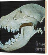 Spotted Hyena Wood Print