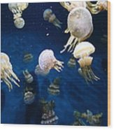Spotted Jelly Fish 5d24951 Wood Print