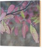 Spotted Leaves Wood Print