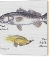 Spotted Seatrout And Rattlin' Minnow Fly Wood Print