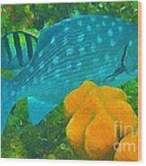 Spotted Surgeon Fish Wood Print