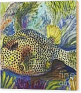 Spotted Trunkfish Wood Print