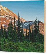Spray Park Panorama Wood Print