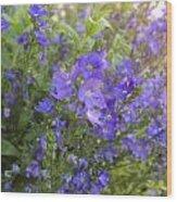 Sprays Of Blue Wood Print