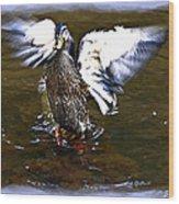 Spread Your Wings Wood Print by Susan Leggett