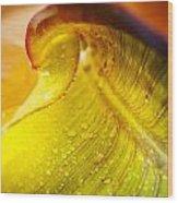 Sprial Leaf Wood Print