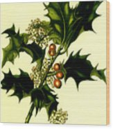 Sprig Of Holly With Berries And Flowers Vintage Poster Wood Print