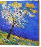 Spring 563140 Wood Print