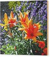 Spring 921 Wood Print