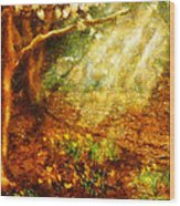 Spring - A Sign Of Spring Wood Print
