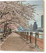 Spring Along The East River Wood Print