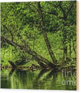Spring Along West Fork River Wood Print by Thomas R Fletcher