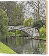 Spring And The River Cam Wood Print